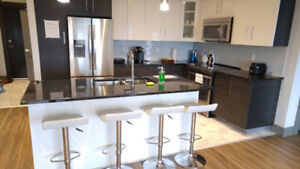 Fully furnished modern 2 bed/2bath apartment November to May 1st