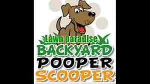 WEEKLY DOG WASTE REMOVAL $10