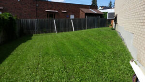 Lawn Mowing Grass Cutting