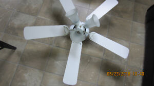 white ceiling fan with 3 lights