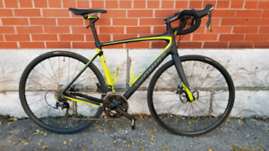 Roubaix Elite 56cm