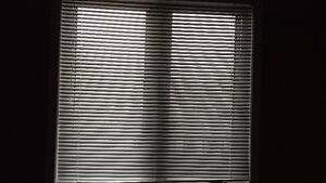 WINDOW BLIND Kitchener / Waterloo Kitchener Area image 2
