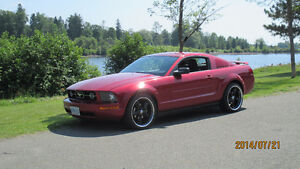 2005 Ford Mustang Pony 4.0L Coupe (2 door)