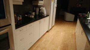 Kitchen cabinets and quartz countertops and appliances