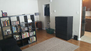 Bachelor Apartment for Sublet - Still Available!