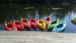 Canoe, Kayak & Stand Up Paddle Board Rentals in Shubie Park!!