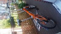 Vélo pliable Dahon D7 speeds
