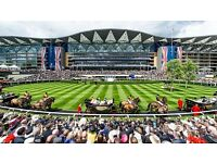 Royal Ascot Ticket x1 Queen Anne Enclosure