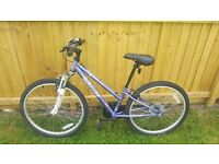 APOLLO X. 24 PURPLE WOMAN/ TEENAGER BIKE