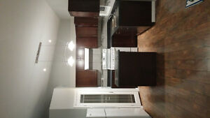 New apartment for rent in Dauphin