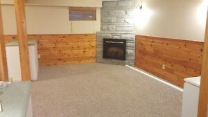$825 + H&H - One Bedroom Open Concept Lower Unit