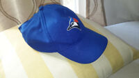 Blue jay hat
