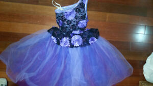 Stunning Dance / Skate  /  Princess Dress Up Costume Size 9 / 10