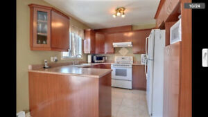 Good Kitchen w all appliances for the best price!!!!