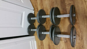 3 sets of dumbells and apex bench