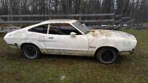 1975 mustang hatchback, a great project!