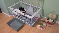 new, large rabbit cage, many accessories