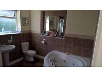 Large double room with own bathroom (jacuzzi bath & shower)
