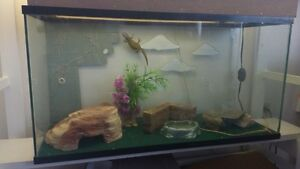 Reptile Tank with Stand