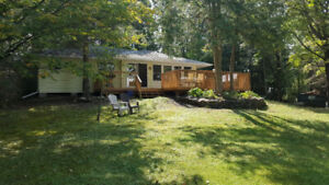 Gorgeous Newly Renovated 4 Season Pigeon Lake Cottage