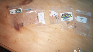 420 seeds for sale