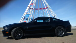 2012 Ford Mustang Shelby Mustang GT500 Coupe (2 door)