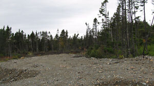 Land that has been cleared off to build on St. John's Newfoundland image 3