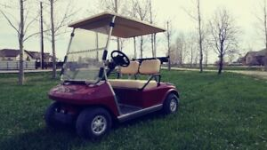 GAS AND ELECTRIC CARTS IN STOCK NOW!
