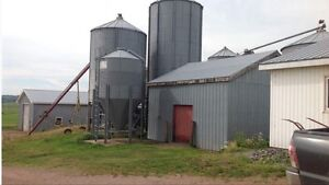 Working beef farm for sale in Nappan, NS Cornwall Ontario image 3