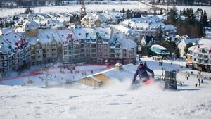 Tremblant Adult Day Pass