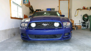 2014 Mustang GT - ONLY 11,000 km!!