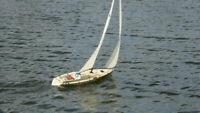 Radio Control Sailing Opportunity