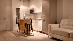 Awesome location, Furnished, Atwater Metro, Hydro etc