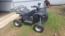 Quad Bike 125cc chinese Dalby Dalby Area Preview