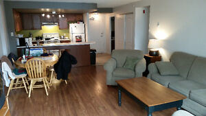 Subletting a Beautiful Downtown One Bedroom Apartment with Den
