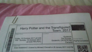 Harry potter and the transfigured town 2017