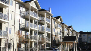 Edmonton Newer Investment Property-Positive Cash Flowing  Day 1.