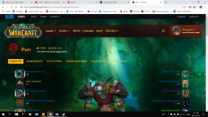 3 Different online MMO accounts (GW2 x2; WoW x1)