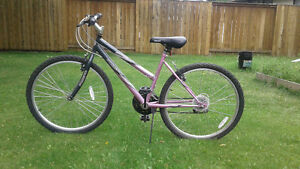 Pink Mountain Bike for Sale!