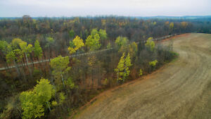 SOLD Beautiful 100Acre North Huron Parcel By Listowel & Hanover! Kitchener / Waterloo Kitchener Area image 6