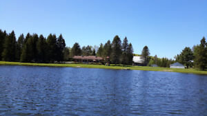 Waterfront Home on Private Lake - Unspoiled Peaceful Haven