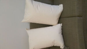 New feather pillows/Queen size