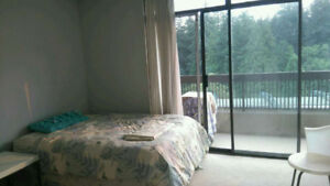 Metrotown highrise apartment, female roommate wanted