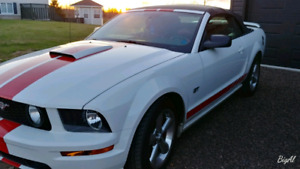 Early bird special! 2007 Ford Mustang GT convertible.