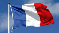 French Tutoring courses - Experienced French native teacher !