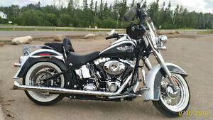Beautiful 2008 Softail Deluxe with only 8000 Km