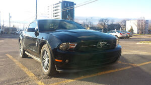 Ford Mustang PREMIUM PONY Package