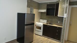 Carterville 3.5 apartment luxury renovated Rent 575$ Free wifi