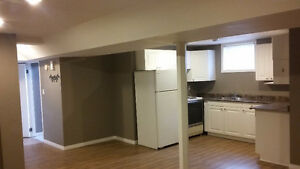 2 Bedroom Duplex Lower level, Available February 1