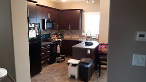 RENT REDUCED! PET FRIENDLY, ATTACHED GARAGE!